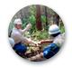 林業優良事業体
